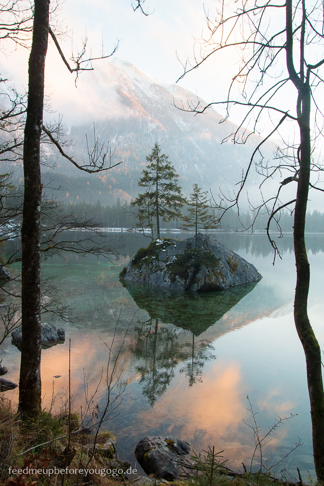 Zauberwald Hintersee Berchtesgadener Land Winter Nebel Feed me up before you go-go