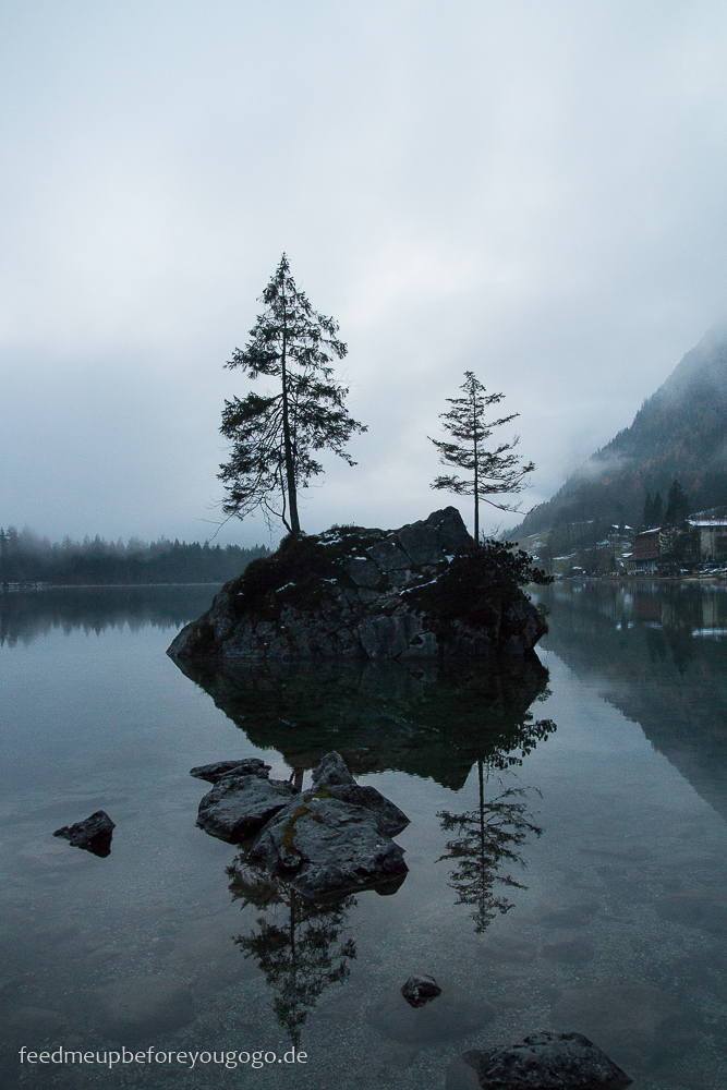 Zauberwald am Hintersee Tannen im Nebel Ramsau Winter im Berchtesgadener Land