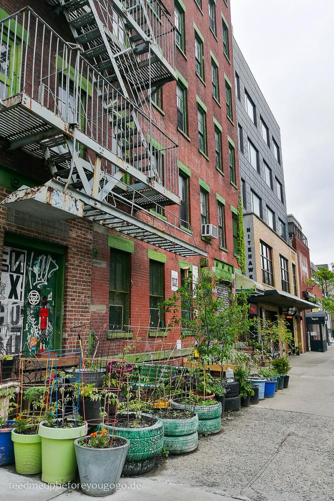 Williamsburg Blumenkübel vor Hausfassade Brooklyn New York