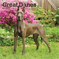 Great Dane Gifts By YUCKLES