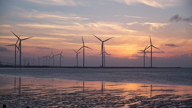 Wind turbine facts: Did you really know them?