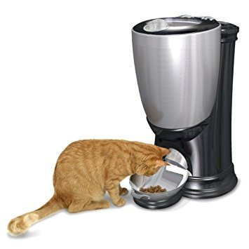 Stainless Steel Cat Feeder