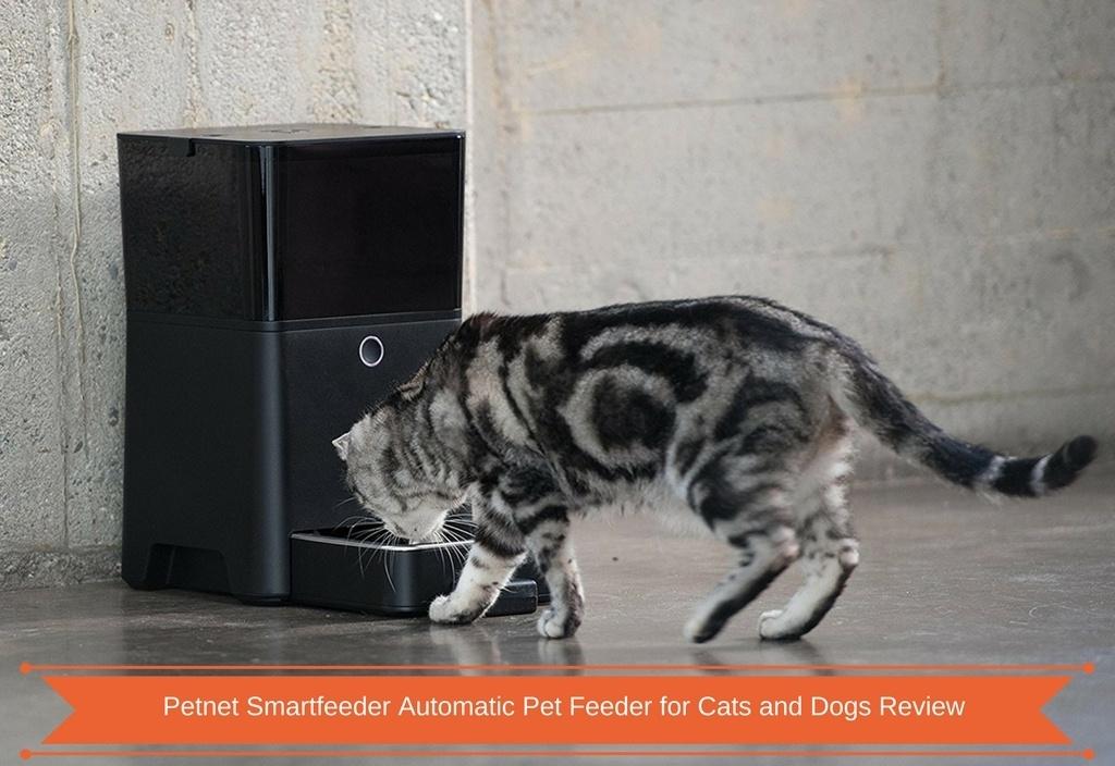 Petnet Smartfeeder