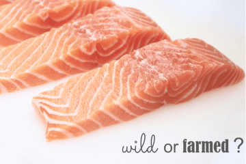understand the differences between wild and farmed salmon