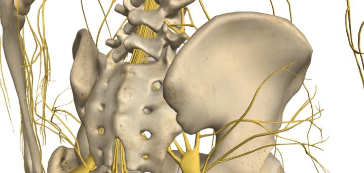香川県腰痛肩こり座骨神経痛整体