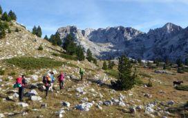 hiking-768x480