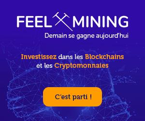 feel-mining.com