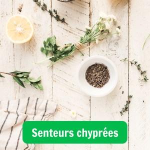 Image illustrant un parfum aux senteurs chyprés