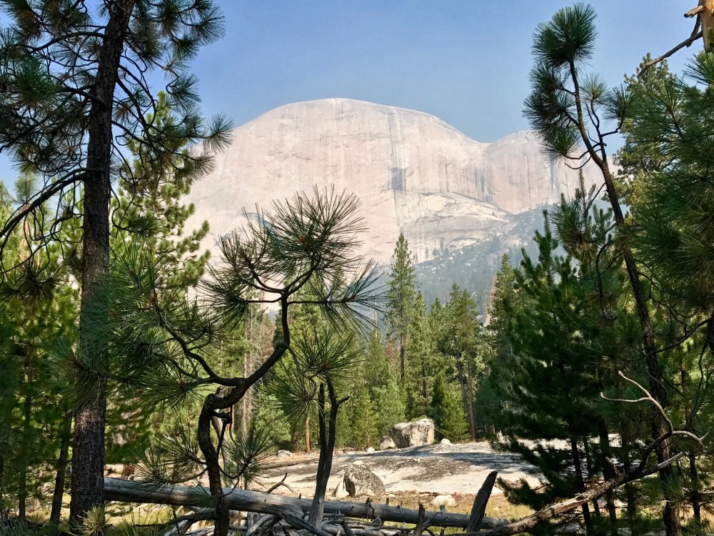 The back of Half Dome as seen from Little Yosemite Valley