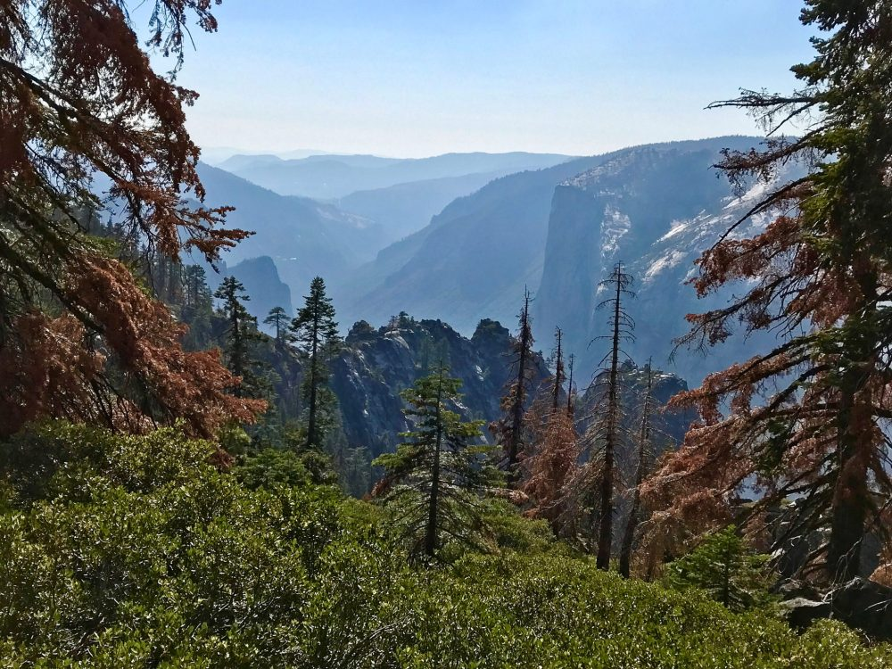 View of Yosemite Valley from Pohono Trail
