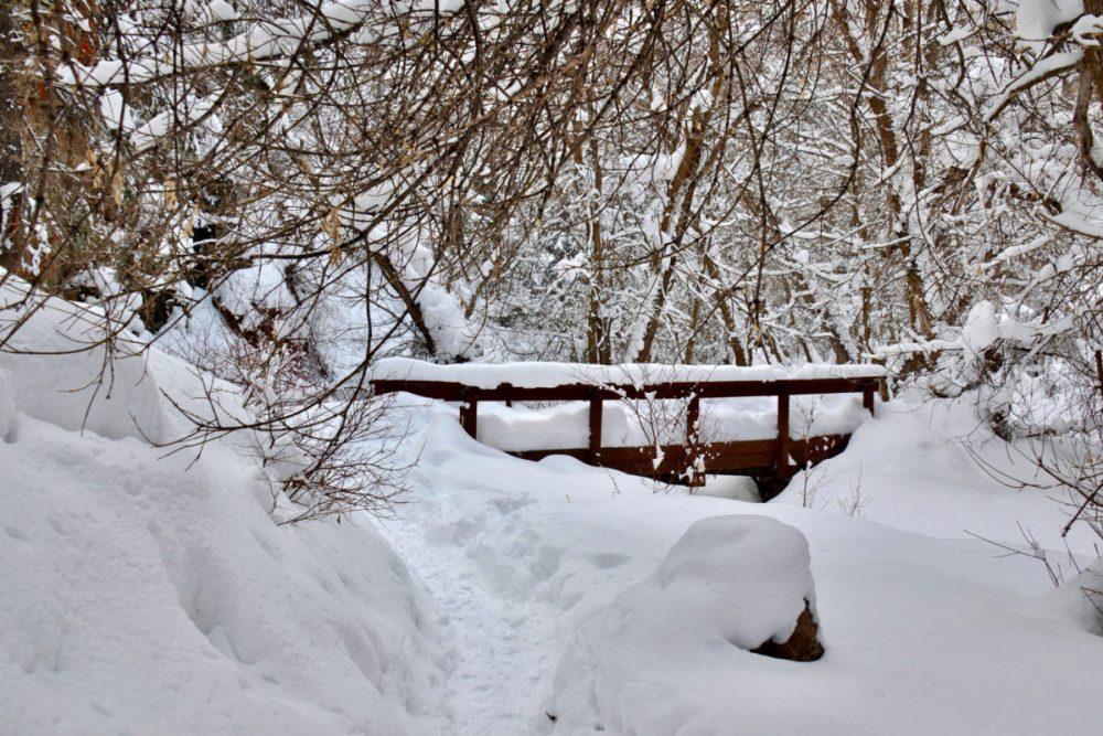 Footbridge on Hanging Lake Trail
