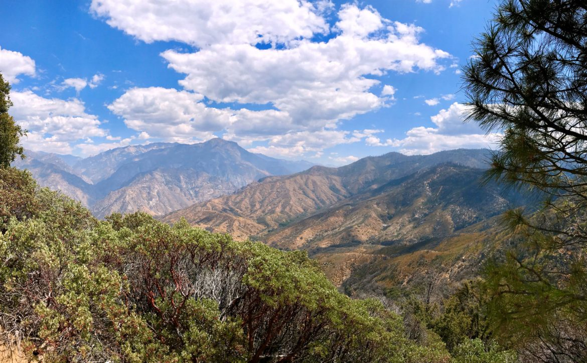 Panorama from Junction View along the Kings Canyon Scenic Byway