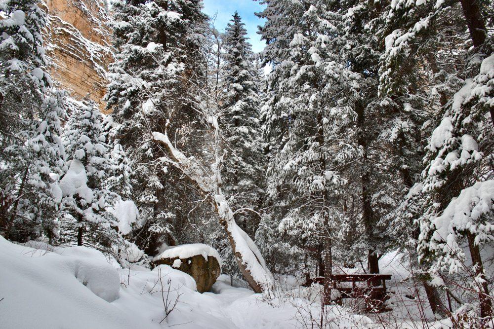 A footbridge on the way to Hanging Lake