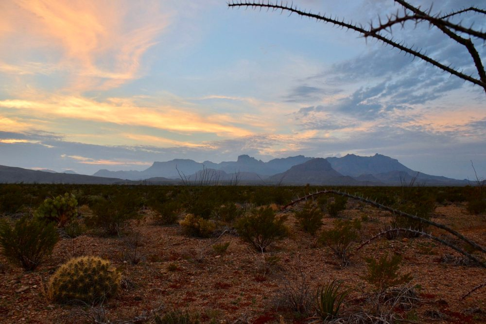 Chisos Mountains at dusk