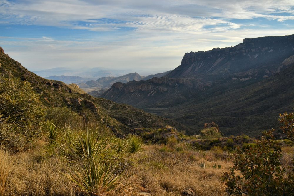 View of Juniper Canyon from Lost Mine Trail in Big Bend