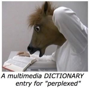 perplexed-horse-ok