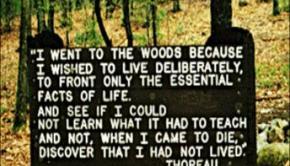 Thoreau's Legacy