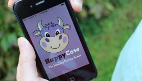 Find vegan fare anywhere with the HappyCow App