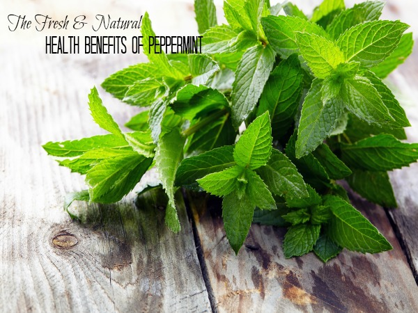 Health Benefits of Peppermint + 3 Ways to Use It