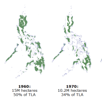 Why your tree planting isn't helping the Philippine environment