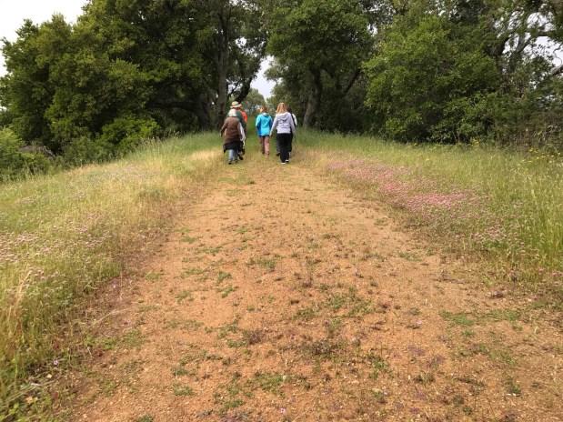 Latest Hiking Report