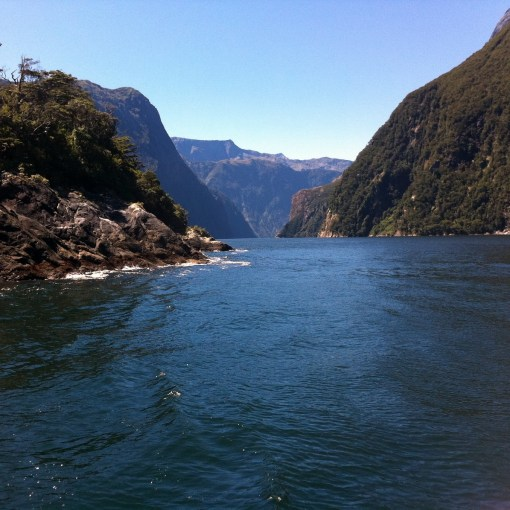 milford sound pic