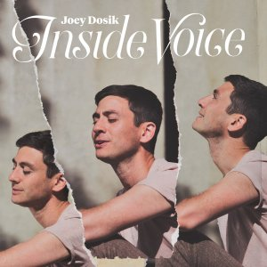Joey Dosik: Inside Voice