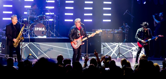 """Gone But Not Forgotten – Zé Pedro, Guitarist for """"Xutos e Pontapés"""""""