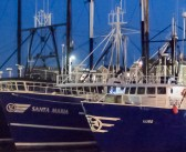 Sardine fishing prohibited on weekends, holidays and Wednesdays