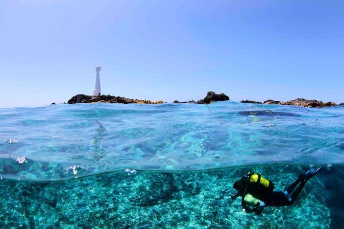 Azores Tourism - Diving
