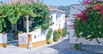Obidos house covered with flowering vines