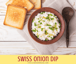 Swiss onion dip with toast squares
