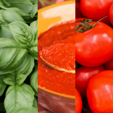 cropped-how-to-make-the-best-homemade-spaghetti-sauce-3-1.png