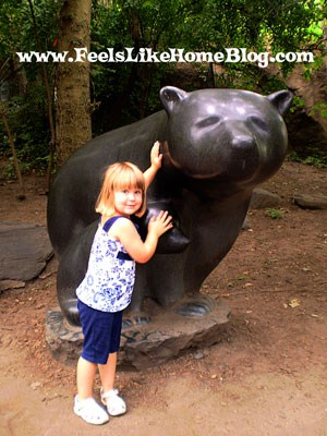 Bear Country at the Philadelphia Zoo
