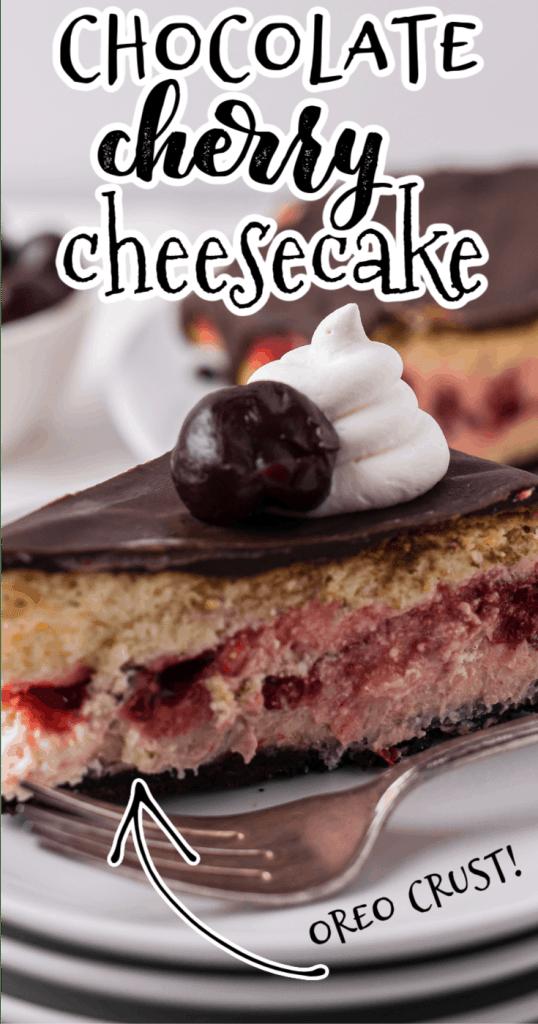 one slice of cherry cheesecake with chocolate ganache