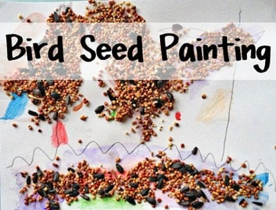 A close up of a bird seed painting