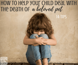 how to help your child cope with the death of a pet - Grief and loss are not easy for adults, and children feel so much more strongly. Helping them through their emotions and feelings in this time is super important, whether they are mourning a dog, cat, goldfish, rabbit, bird, or other pet. Death is a part of life with animals and it is normal to feel sad and lost without your best friend. This mom's thoughts and feelings about her kitten are witty and poignant. Awesome read.