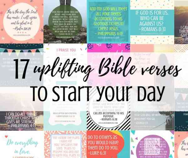 collage of Bible verses