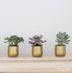 handmade gold vases