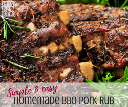 The best homemade BBQ pork recipe for pulled pork, ribs, roast, or other cuts of meat. Simple and easy recipe that's great for gifts and stores well. Could be used for any meat including chicken. Includes brown sugar.