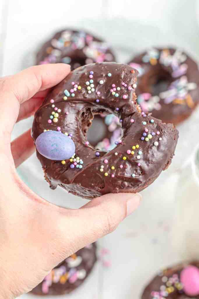 one chocolate donut for Easter