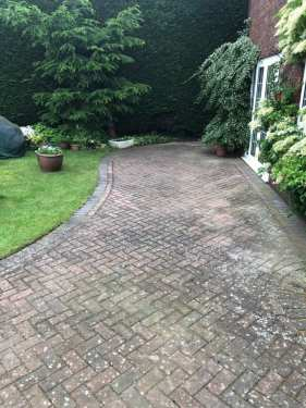 red block paving patio with black spot infestation