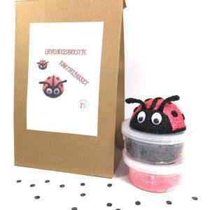 knutselpakket lieveheersbeestje