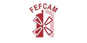 Federación de Empresarios Farmacéuticos de Castilla - La Mancha (FEFCAM)