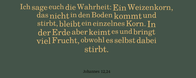 Ich sage euch die Wahrheit: Ein Weizenkorn, das nicht in den Boden kommt und stirbt, bleibt ein einzelnes Korn. In der Erde aber keimt es und bringt viel Frucht, obwohl es selbst dabei stirbt. - Johannes 12,24