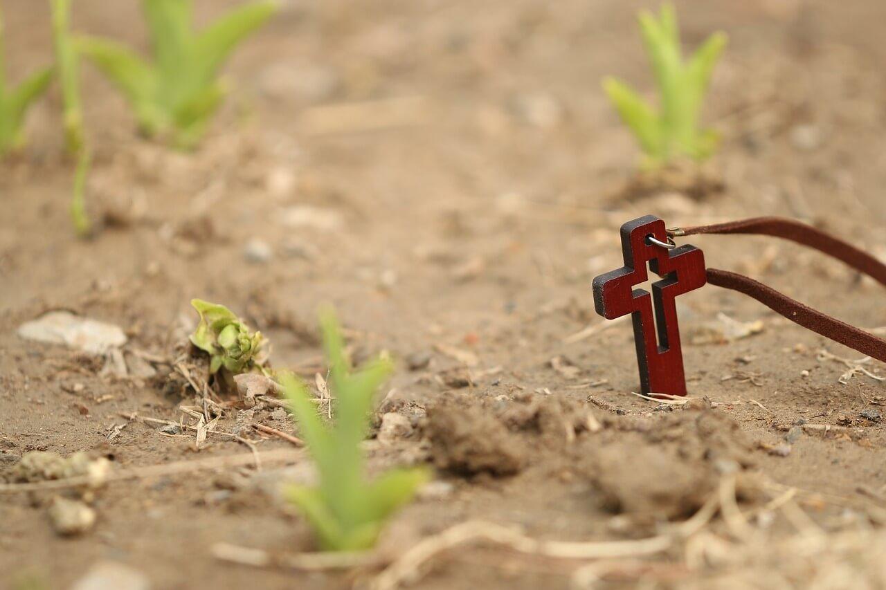 """Symbolbild """"Auferstehung"""": Rotes Kreuz zwischen Pflanzen im Sand"""