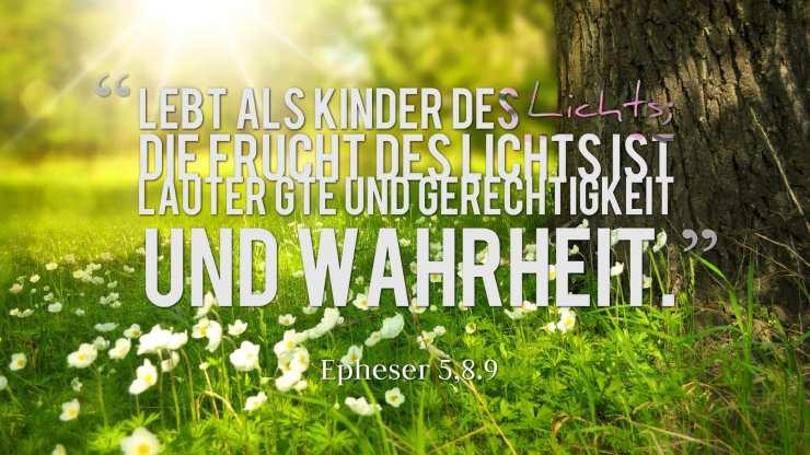 Lebt als Kinder des Lichts; die Frucht des Lichts ist lauter Güte und Gerechtigkeit und Wahrheit. - Epheser 5,8.9