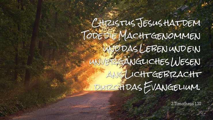 Christus Jesus hat dem Tode die Macht genommen und das Leben und ein unvergängliches Wesen ans Licht gebracht durch das Evangelium. - 2.Timotheus 1,10