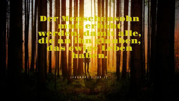 Der Menschensohn muß erhöht werden, damit alle, die an ihn glauben, das ewige Leben haben. - Johannes 3,14b.15