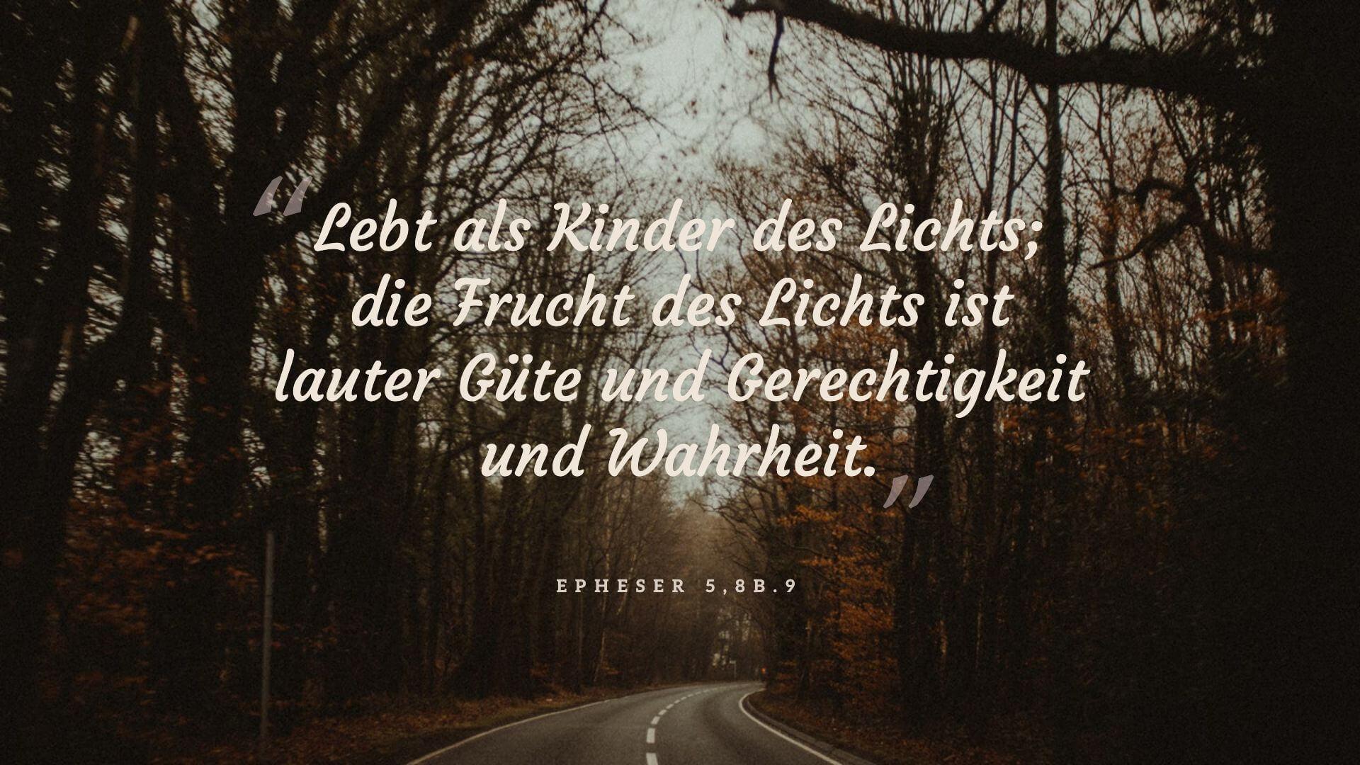 Lebt als Kinder des Lichts; die Frucht des Lichts ist lauter Güte und Gerechtigkeit und Wahrheit. - Epheser 5,8b.9